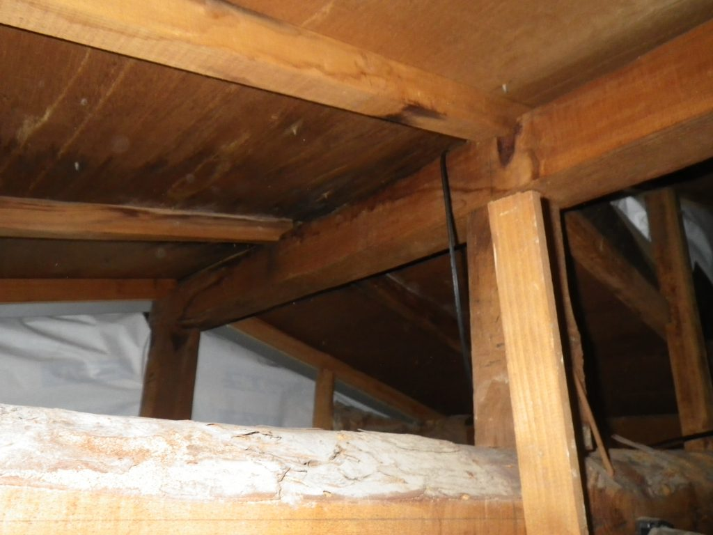 雨漏り 天井裏